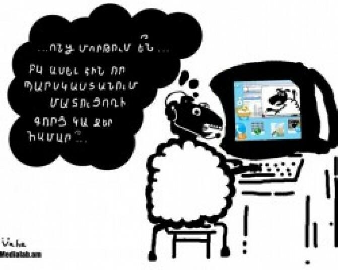 Աննախադեպ արտահանում. ոչխարի գլխաքանակի կրճատումը` մարտահրավեր Հայաստանի եզդիական համայնքի համար