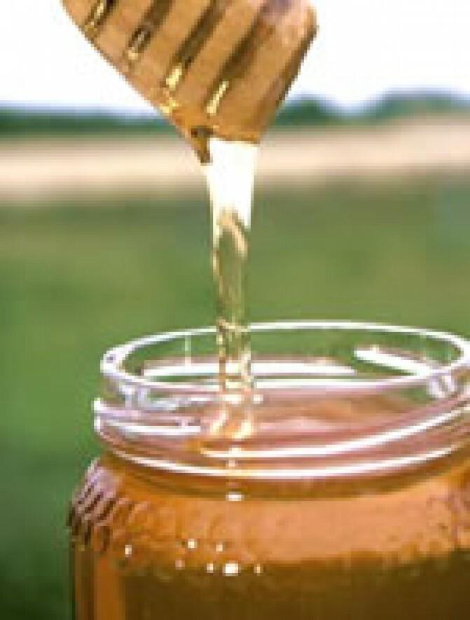 Մասնագետները բացահայտել են մեղրի հակաբակտերիալ ուժը