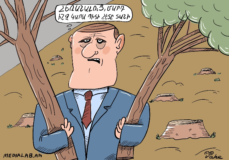 Տարոնի վերջին ծառը