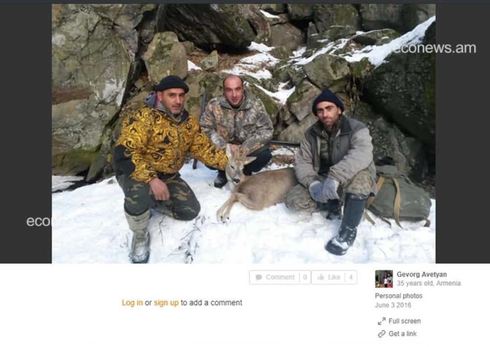 Սպանված լուսան, այծյամ, գորշուկ... ապօրինի որսի մասին ահազանգերը շարունակվում են. EcoNews.am