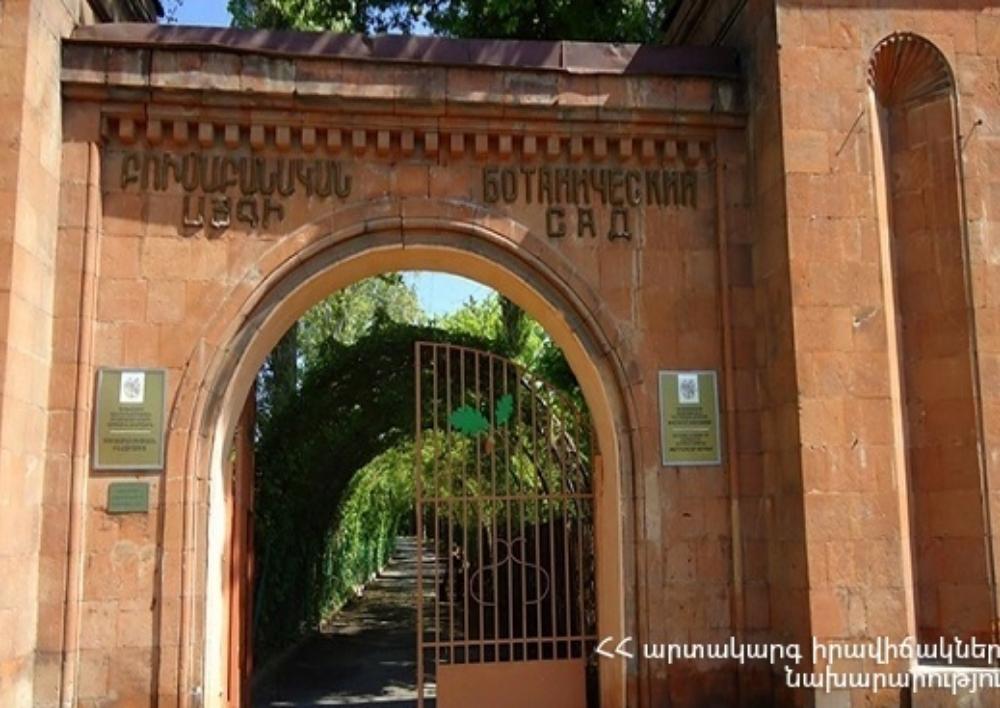 Հրդեհ Երևանի բուսաբանական այգում