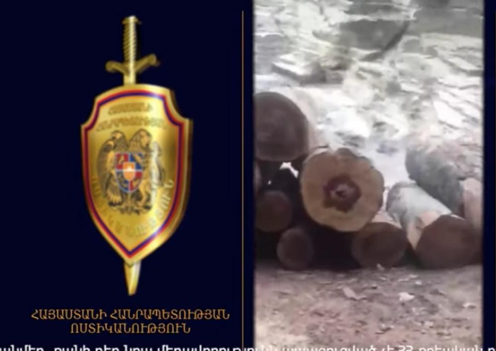 Տավուշի ոստիկանները ապօրինի փայտանյութով արտադրամաս ու բեռնատարեր են հայտնաբերել. Տեսանյութ