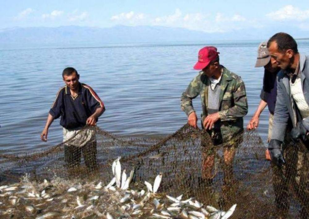 Շրջակա միջավայրի նախարարությունը մշակել է արդյունագործական ձկնորսություն թույլ տալու կարգ