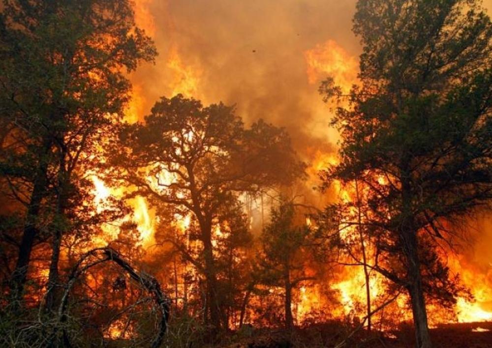 Վանաձորի հարակից սարերում բռնկված հրդեհի հետեւանքով փրկարարներից մեկը մահացել է, մյուսը ստացել է այրվածքներ. Armtimes.com