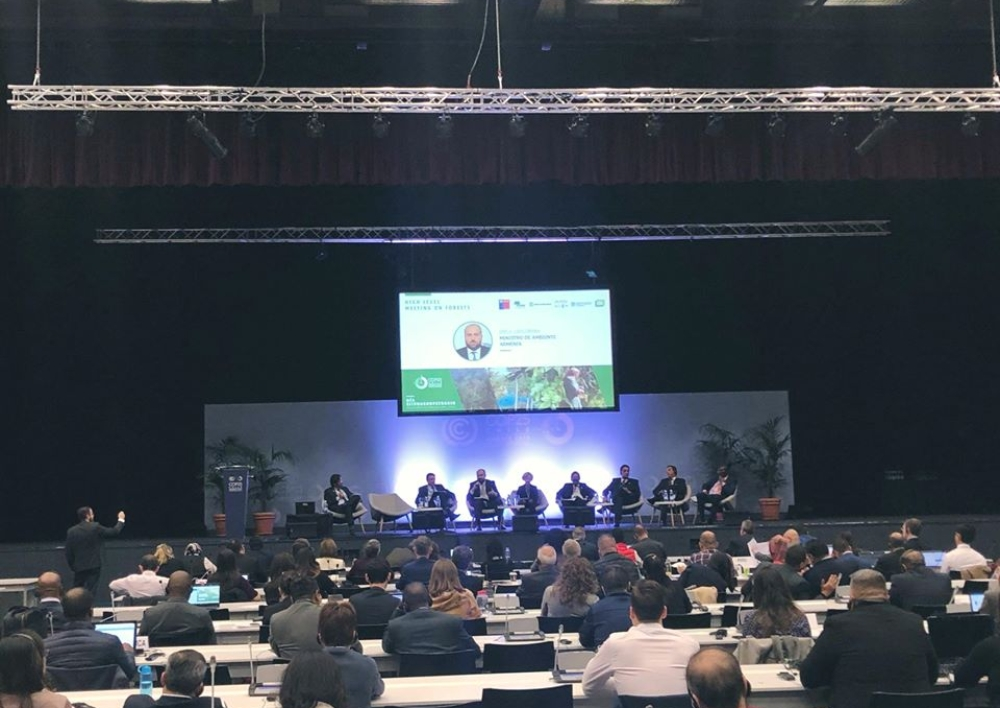 Էրիկ Գրիգորյանը մասնակցել է «Կարևորելով անտառների դերը՝ կլիմայի փոփոխության համատեքստում» բարձրագույն հանդիպմանը
